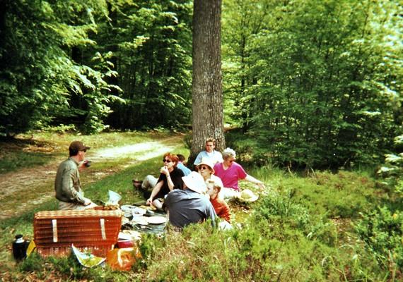 attelages Fontainebleau